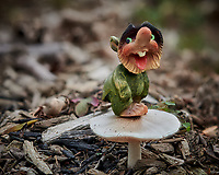 Happy Troll standing on his Mushroom. Composite of 70 focus stacked images taken with a Nikon D850 camera and 105 mm f/1.4 lens (ISO 64, 105 mm, f/2.8, 1/500 sec). Raw images processed with Capture One Pro Helicon Focus (method C, smoothing, 4).