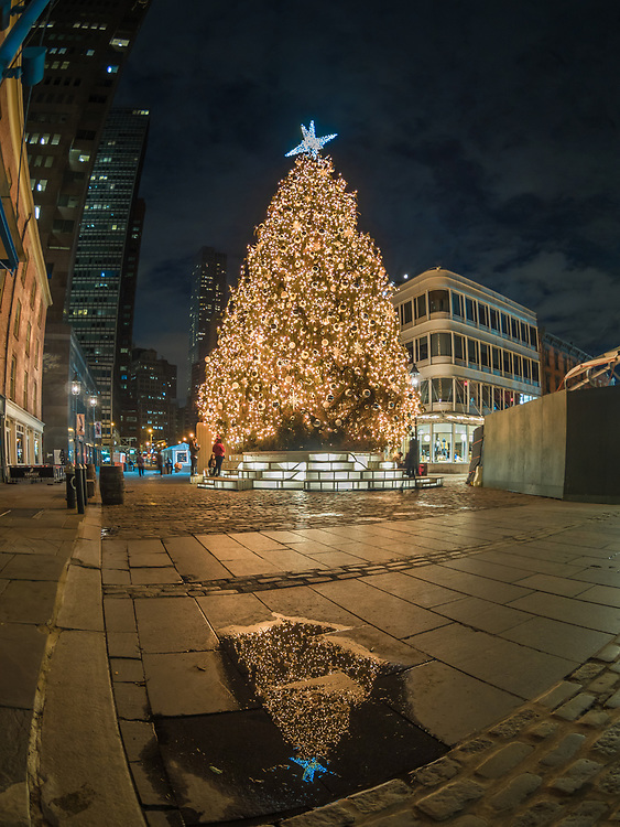 South Street Seaport Christmas Tree, NYC