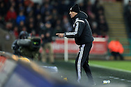 Swansea city head coach Francesco Guidolin  makes a point to his coaching staff. Barclays Premier league match, Swansea city v Aston Villa at the Liberty Stadium in Swansea, South Wales on Saturday 19th March 2016.<br /> pic by  Andrew Orchard, Andrew Orchard sports photography.