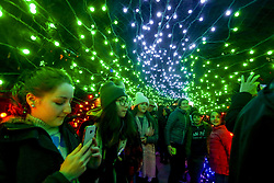 November 16, 2018 - Vancouver, Canada - People enjoy the ''Lights of Hope'' display in Vancouver, Canada. ''Lights of Hope'' is one of the largest annual fundraising events featuring the massive Christmas-lights displayed on St. Pauls Hospital in downtown Vancouver. (Credit Image: © Liang Sen/Xinhua via ZUMA Wire)