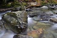 The Torrent Walk, Dolgellau, Snowdonia Natioal Park, Wales