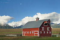 Moon over Red Barn Wallowa Valley, near Joseph Oregon, Wallowa Mountains in the background.