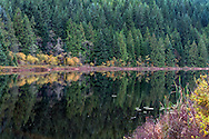 Fall foliage at Rolley Lake Provincial Park, Mission, British Columbia, Canada