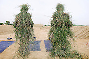 Two snipers in mimetic disguise are practising at a long-range shooting ground at the Shaheed Benazir Bhutto Elite Police Training Center, a commando and anti-terrorism academy on the outskirts of Karachi. The training center was founded by retired colonel Abdul Wahid Khan, a brave officer who served as a gunship helicopter pilot in the Pakistani Air Force and around the globe with the United Nations, but who's first task as a young army officer in 1979 was to train Afghan Mujahedeen to fight the Soviet Army, the very Mujahedeen that are today's Taleban.