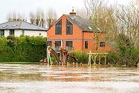 The river Avon bursts its banks just outside Stratford upon Avon Warwickshire photo by Mark Anton Smith