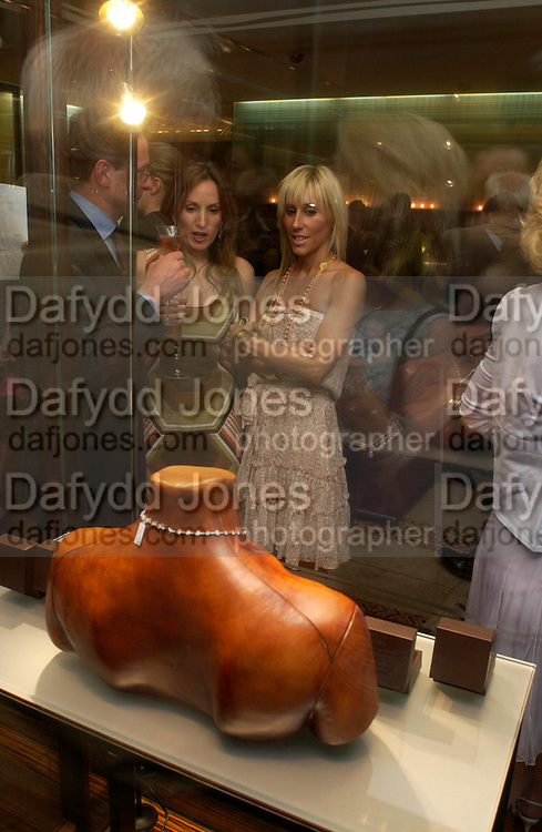 Emily Oppenheimer and Princess Alexandra von Furstenburg. Book launch of ' The Russian House'  by Ella Krasner at De Beers. 50 Old Bond St. London W1. ONE TIME USE ONLY - DO NOT ARCHIVE  © Copyright Photograph by Dafydd Jones 66 Stockwell Park Rd. London SW9 0DA Tel 020 7733 0108 www.dafjones.com