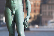 In the Garden of Stadshuset, the Stockholm Town Hall. a bronze statue Song by Carl Eldh a naked man holding a bunch of grapes. In the background the royal palace Closeup of the hand holding the grape bunch and the man's sex penis genitalia Stockholm, Sweden, Sverige, Europe
