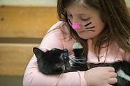 Hallmark Channel Kitten Bowl IV