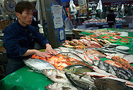 A fishmonger at the Kanazawa Omicho market showing the fresh caught of the day to passing customers. Japan 2013