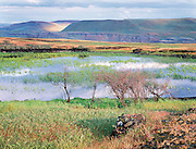 spring pond and ray of sunshine on distant hills, Columbia Hills, Eastern WA.