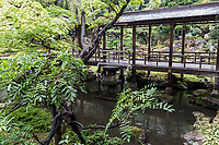 Erinji Temple Garden Arched Bridge - Erinji temple was built in 1330 with Muso Soseki as its founder. Muso was in his day the foremost designer of Japanese gardens, and went on to design many gardens in Kyoto, some of which are UNESCO world heritage sites such as Saihoji and Tenryuji.   Although the garden was built at the same time, the original entire temple burned down in the sixteenth century.  Some of the present garden had to be restored in the Edo period.  Erinji Garden's focus is on a pond, with borrowed scenery behind it of a rockery, a favorite style and theme of Muso.  There focal points are from various viewpoints: including from an arched bridge, and the more orthodox view from a tatami room.  The central island in the pond contains an enormous Japanese pine tree, the garden's most famous and unique element. Erinji is a part of the Myoshin-ji Rinzai sect of Zen Buddhism.   The temple  was once the family temple of Takeda Shingen who is buried here.