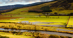 The River Tweed in flood after heavy rain near Broughton in the Scottish Borders<br /> <br /> (c) ANDREW WILSON | www.EdinburghElitemedia.co.uk