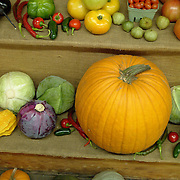 A nice variety of fall vegetables for sale at a small farm stand in mid coast Maine.