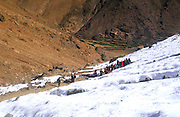 Trekking group in snow covered valley, Atlas Mountains, Morocco