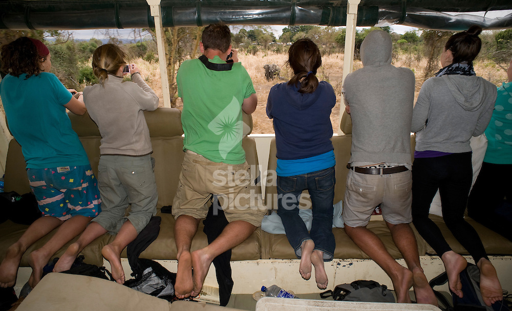 Picture by Daniel Hambury. .6/8/10..Overlanders take pictures as the truck passes through Mikumi National Park in Tanzania during an overland truck experience from Cape Town, South africa through Botswana, Zambia, Malawi, Tanzania and ending up in Nairobi, Kenya.
