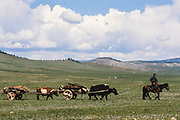 Nomads moving gers<br /> to summer grazing grounds<br /> near Lake Hovskol<br /> Mongolia