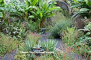 65821-00218 Salvias, Banana Plants, and arbor in garden at Montrose Gardens Hillsborough, NC