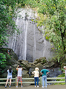 La Coca Falls in El Yunque National Forest, Puerto Rico.