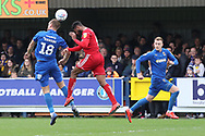 AFC Wimbledon striker James Hanson (18) flicking ball onto AFC Wimbledon striker Joe Pigott (39) during the EFL Sky Bet League 1 match between AFC Wimbledon and Accrington Stanley at the Cherry Red Records Stadium, Kingston, England on 6 April 2019.