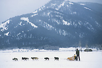 A dogsled team runs along the base of the Tetons in Jackson Hole, Wyoming.