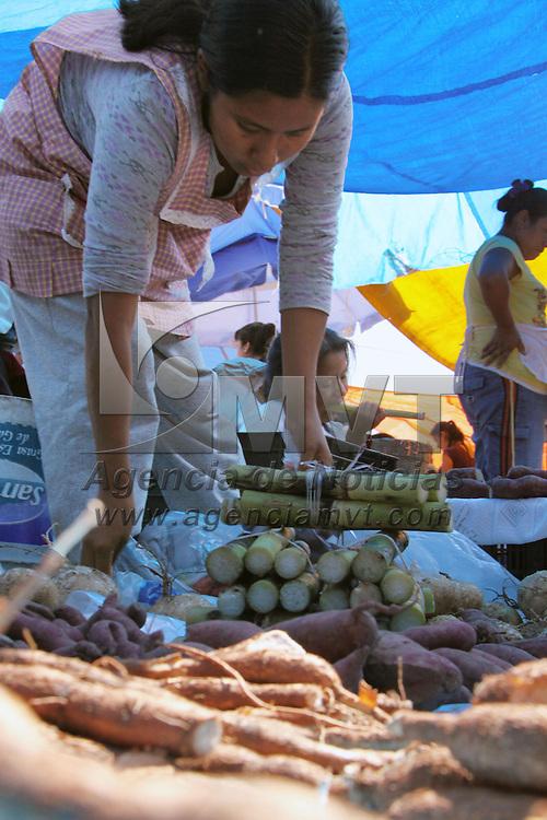 METEPEC, México.- La venta de flor y fruta en los tianguis de diferentes poblados del Valle de Toluca, se vieron poco concurridos, según los vendedores señalando que este año fueron pocas las ventas ya que prefirieron salir de paseo en este largo puente que comprar y poner sus ofrendas. Agencia MVT / José Hernández. (DIGITAL)