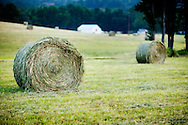 Hay bale just after being cut on a farm in Arkansas