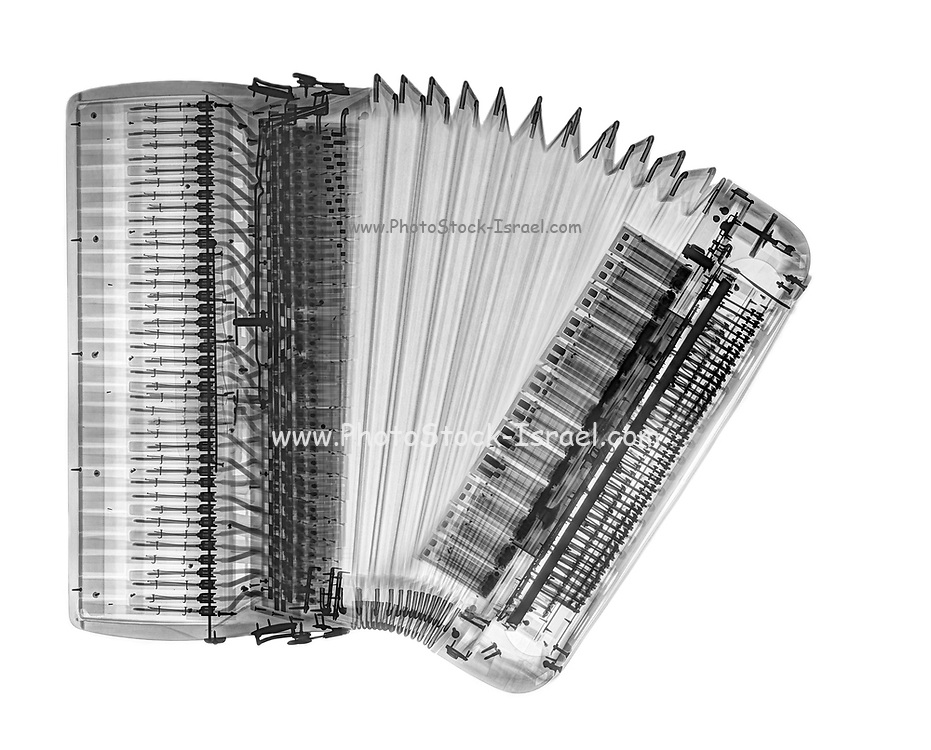 X-ray of an Accordion on white background