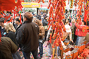 Chinese New Year celebration China town New York City