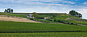 Vineyards at St Emilion in the Bordeaux wine region of France