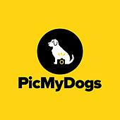 PicMyDogs