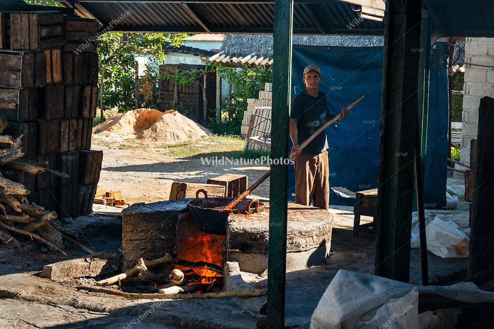 A worker constantly stirs the pot containing the guava-sugar mixture on an open firepit during the process of making Guyaba bars (Florida, Camagüay Province, Cuba).