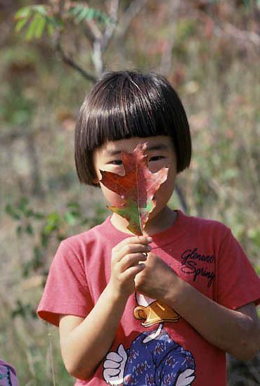 Education, Hawk Ridge-young Korean girl on nature hike holding fallen oak leaf. Fall.