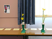 Narcissi on show at The Northern Group of the Daffodil Society show and competition at Pilley Community Centre, South Yorkshire. A Royal Wedding photograph of William and Kate is stuck on the wall of the Community Centre.