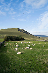 Mam Tor and its distinctive East Face viewed from Winnats Head Farm at the head of Winnats Pass<br />  11 October 2015<br />  Image © Paul David Drabble <br />  www.pauldaviddrabble.co.uk