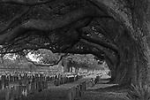 Chalmette Cemetery