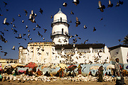 Market traders sit beneath the The Hamoudi Mosque, while a flock of birds eye up the food on sale below. Djibouti City