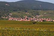 vineyard village gueberschwihr alsace france