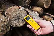 Garry Battle measures the moisture content of the wood stack with a Protimeter Moisture Meters. Ideally it needs to be around 30% to be ready for chipping. The wood is stored on an airfield for about a year to dry. Suffolk county council sustainable wood chip production, Suffolk.
