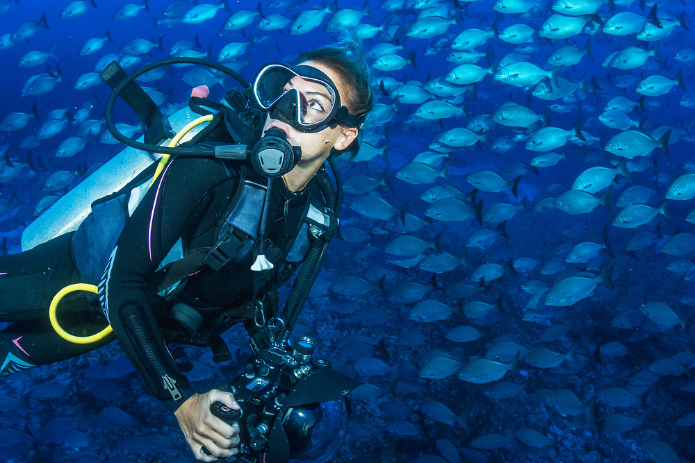 A female SCUBA diver surrounded by fish in The Bahamas.