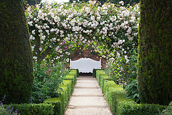 View towards white bench in the rose garden at Mottisfont. Rosa 'Adélaïde d'Orléans' on the arches, yew topiary pillars and low box hedges