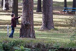 Young boy and tree, Kiwanis Park, Lufkin, Texas, USA.
