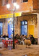 Tea house in Bizerte