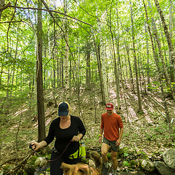 A man and woman walk with their dog in the forest in Jackson, New Hampshire. White Mountains.