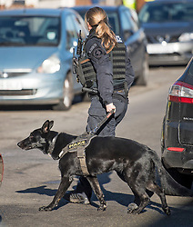 © Licensed to London News Pictures. 22/01/2021. London, UK. A police dog handler at the scene where police are involved in a standoff with a man reported to be in possession of a firearm at a residential address in Southhall, west London. Photo credit: Ben Cawthra/LNP