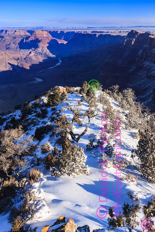 Fresh snow on Lipan Point, Grand Canyon and the Colorado River, , Grand Canyon National Park, © David A. Ponton