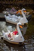 Bootsverleih am Moldau Ufer mit Schwan Tretbooten.