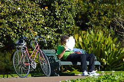 A tranqüilidade do Victoria Park, situado em frente a Universidade de Auckland, é o local perfeito para os estudos. Nos horários de intervalo, alunos aproveitam as belezas do parque para colocar os estudos em dia. FOTO: Lucas Uebel/Preview.com