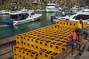 Loading Cargo which has arrived by ship from the mainland<br /> Puerto Ayora, Santa Cruz Island, GALAPAGOS ISLANDS<br /> ECUADOR.  South America
