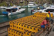 Loading Cargo which has arrived by ship from the mainland<br /> Puerto Ayora, Santa Cruz Island, GALAPAGOS ISLANDS<br /> ECUADOR.  South America