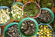 Bamboo shoots, fish, wild herbs and aubergines for sale at a roadside market in Vientiane province, Lao PDR. A large variety of local products are available for sale in roadside markets all over Laos.